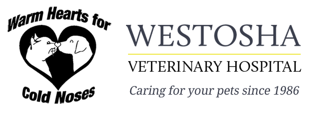 Logo for Westosha Veterinary Hospital Salem, Wisconsin